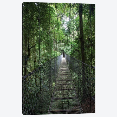 Mistico Arenal Hanging Bridges Park in Arenal, Costa Rica. Canvas Print #NDS12} by Michele Niles Art Print