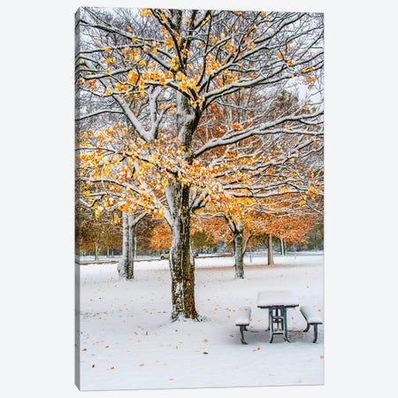 Autumn And Snow Canvas Print #NEJ131} by Nejdet Duzen Art Print