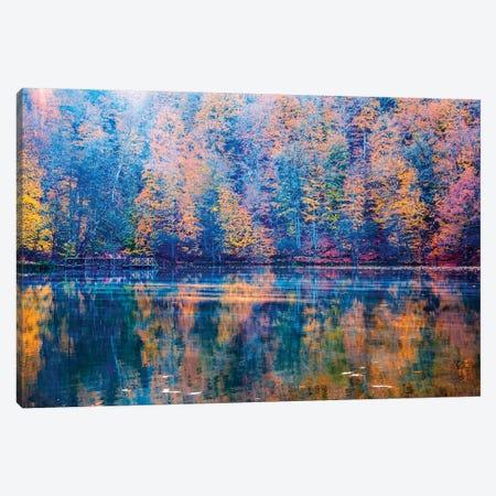 Autumn Mood Canvas Print #NEJ139} by Nejdet Duzen Art Print