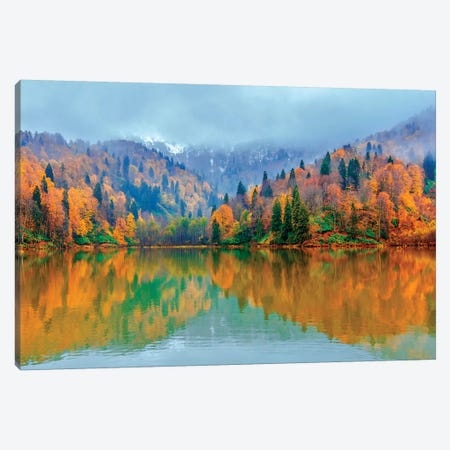 Beauty Of Autumn Canvas Print #NEJ144} by Nejdet Duzen Canvas Art Print