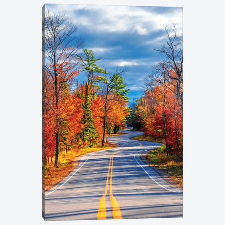 Curve Road Canvas Print #NEJ150} by Nejdet Duzen Canvas Print