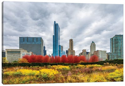 Autumn And Chicago Skyline Canvas Art Print