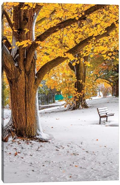 Autumn And Winter Canvas Art Print