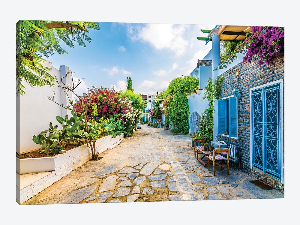 Bodrum,Turkey X 1-piece Art Print