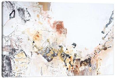 Black & White Series I Canvas Art Print