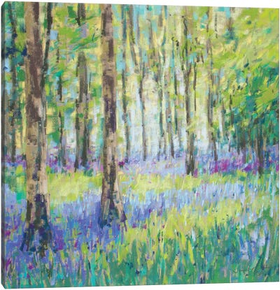 Bluebell Woods Canvas Art Print