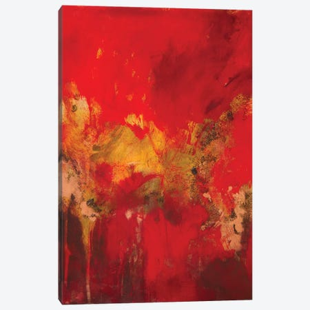 Copper and Red I Canvas Print #NER43} by Jennifer Gardner Canvas Art