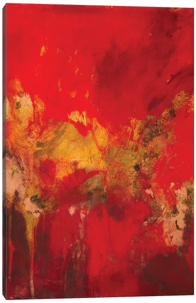 Copper and Red I Canvas Art Print