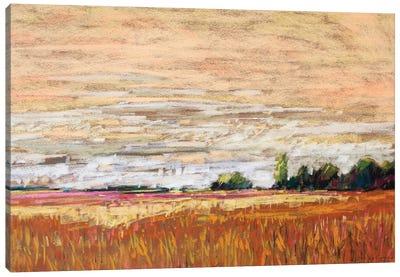 Late Afternoon Light VI Canvas Art Print