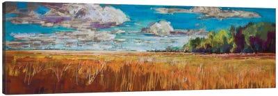 Late Summer Clouds Canvas Art Print
