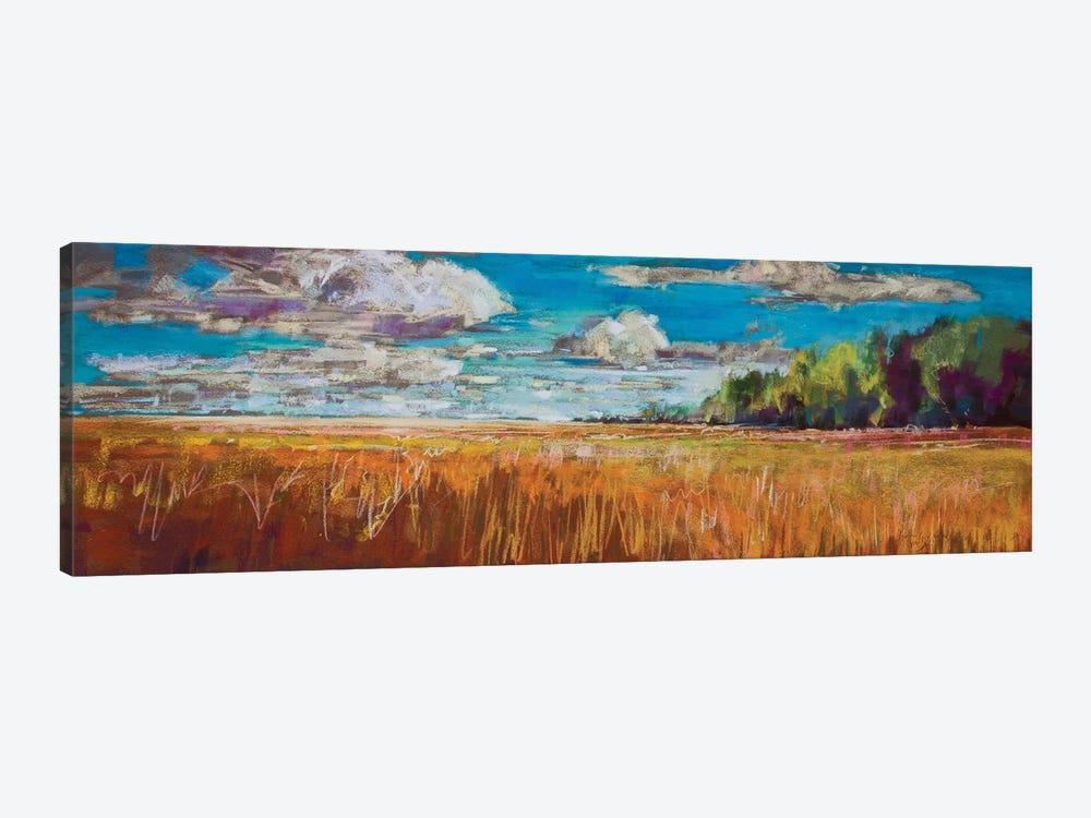Late Summer Clouds by Jennifer Gardner 1-piece Art Print