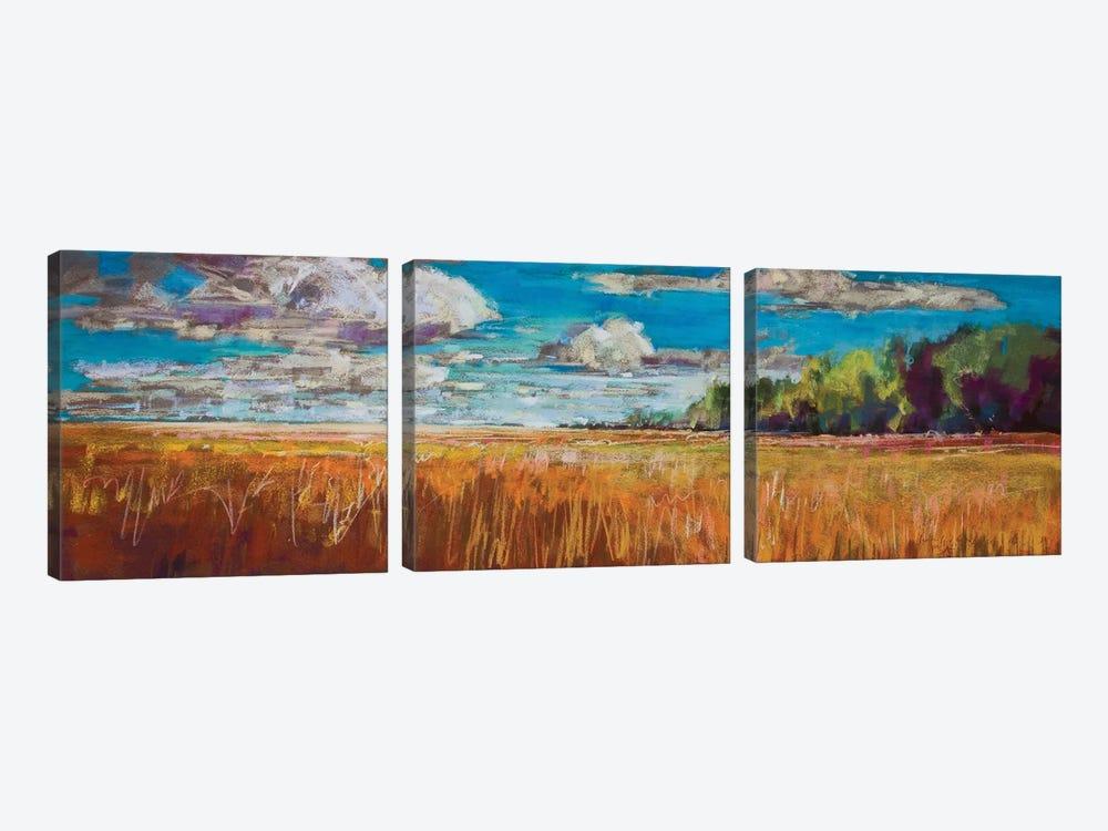 Late Summer Clouds by Jennifer Gardner 3-piece Canvas Print
