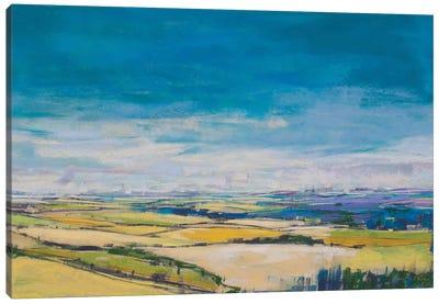 Patchwork Fields II Canvas Art Print