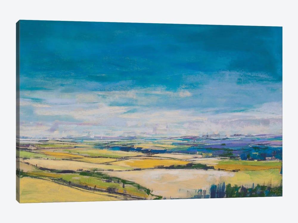 Patchwork Fields II by Jennifer Gardner 1-piece Canvas Wall Art