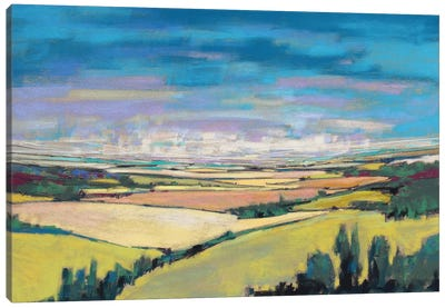 Patchwork Fields V Canvas Art Print