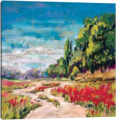 Poppy Path II Canvas Art Print