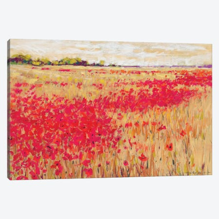 Poppies' Evening Light I Canvas Print #NER6} by Jennifer Gardner Canvas Art Print