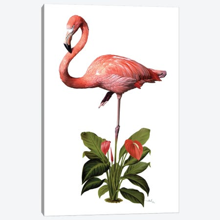Frollein Flamingo Canvas Print #NET17} by Nettsch Canvas Artwork
