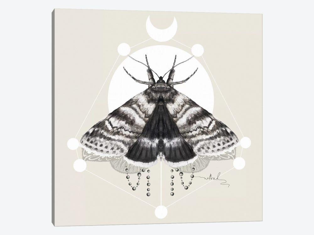 Moth by Nettsch 1-piece Canvas Art Print