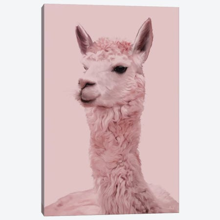 Lama Canvas Print #NET45} by Nettsch Canvas Print