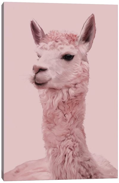 Lama Canvas Art Print