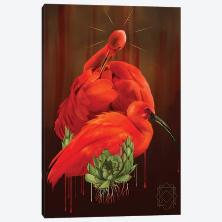 Ibis Canvas Print #NET60} by Nettsch Canvas Wall Art