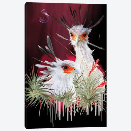 Secretary Birds Canvas Print #NET61} by Nettsch Canvas Art