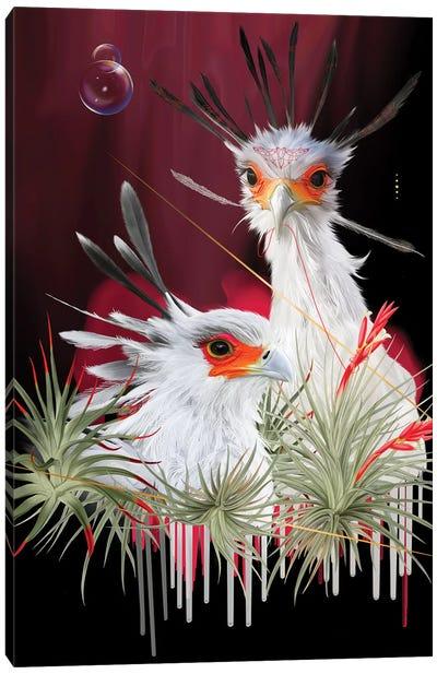 Secretary Birds Canvas Art Print