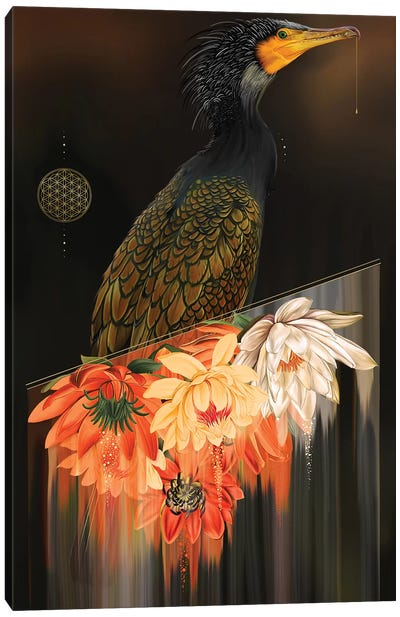 Cormorant Canvas Art Print