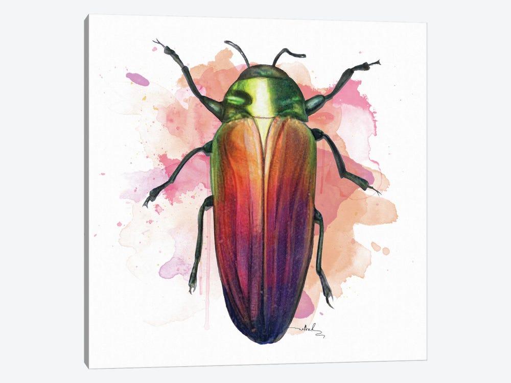 Belionota Sumptuosa by Nettsch 1-piece Canvas Art