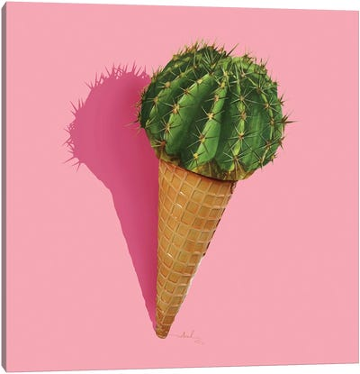 Caramba Cacti Canvas Print #NET8