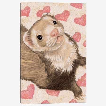 Ferret Otto Canvas Print #NEW11} by Natalie Ewert Canvas Artwork