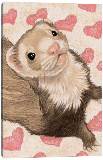 Ferret Otto Canvas Art Print