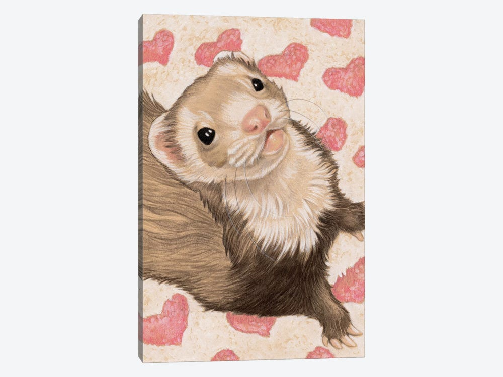 Ferret Otto by Natalie Ewert 1-piece Canvas Art Print