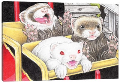 Rollercoaster Ferrets Canvas Art Print