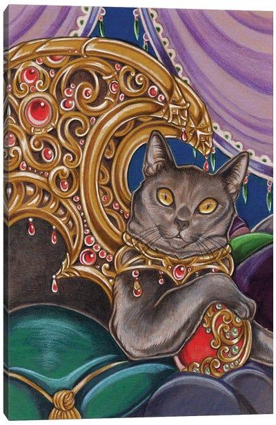 Cat Cato Canvas Art Print