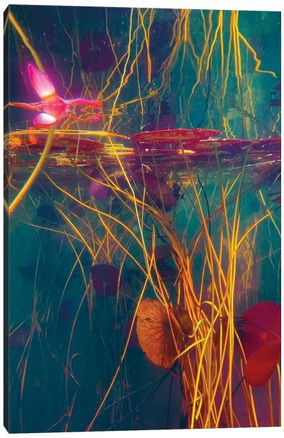 Intravenous Canvas Art Print