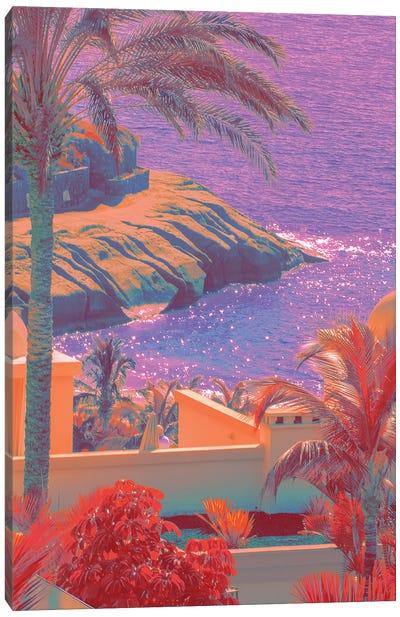 Fields Of Lavender Canvas Art Print