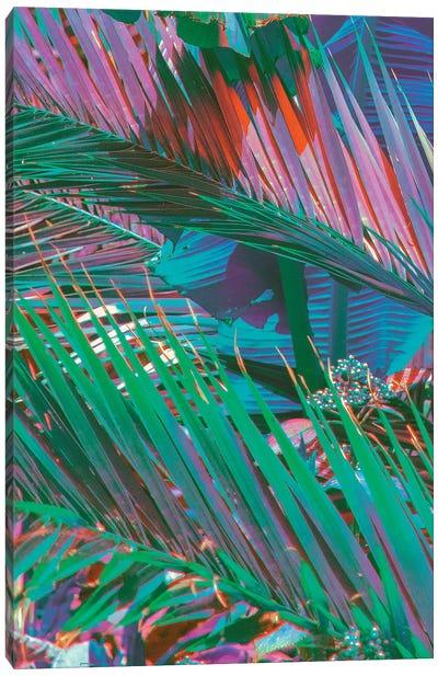 Palms Of Paradise Canvas Art Print