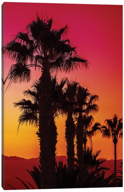 Ruby Sands Canvas Art Print