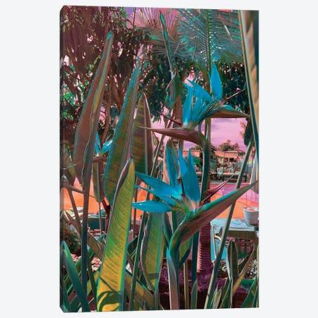 Ultra Tropical Canvas Print #NHE64} by Nathan Head Canvas Print