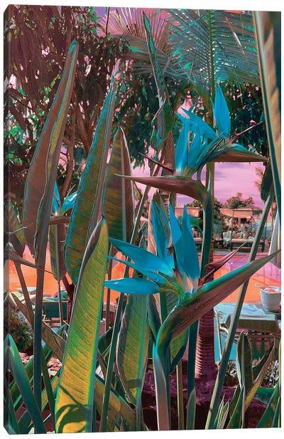 Ultra Tropical Canvas Art Print