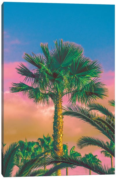 Warmer Days Are Coming Canvas Art Print