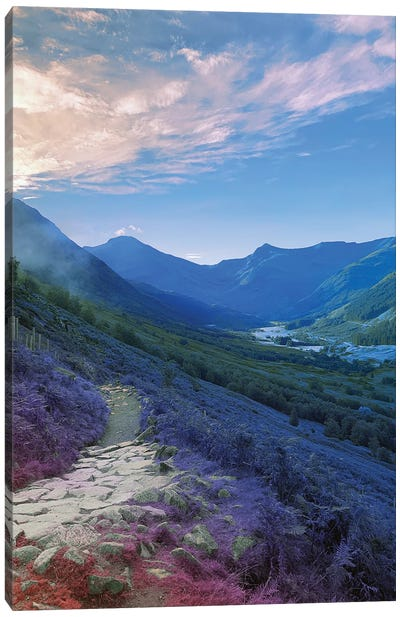 The Land Turned Blue Canvas Art Print