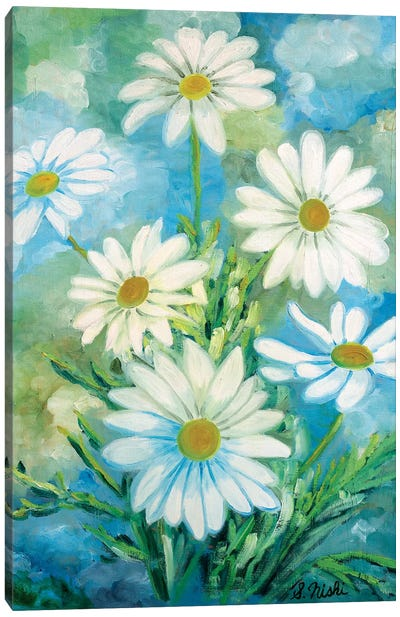 Daisies Against The Sky Canvas Art Print