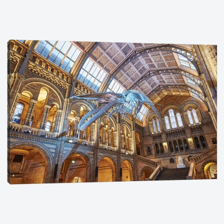 Blue Whale Hintze Hall V Canvas Print #NHM124} by Natural History Museum (UK) Art Print