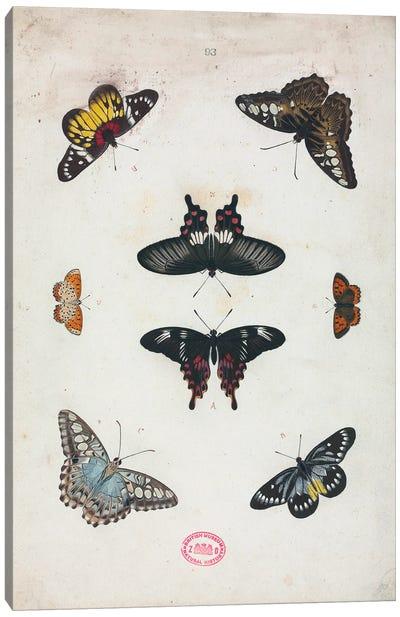 De Uitlandsche Kapellen Canvas Art Print