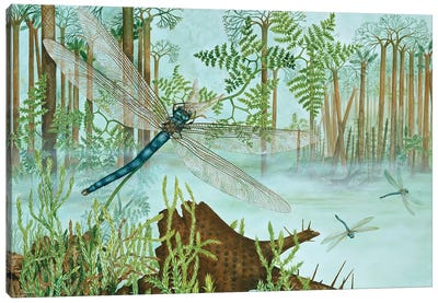 A Giant Dragonfly From The Upper Carboniferous Canvas Art Print
