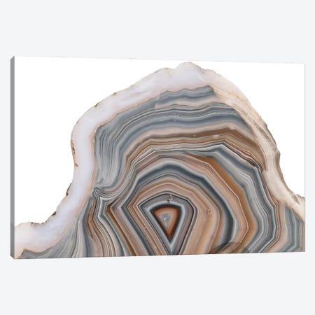 Agate Stone Cross Section And Patterns Canvas Print #NHM46} by Natural History Museum (UK) Art Print
