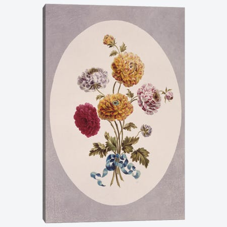 Persian Buttercup, Folio 51 From A Collection Of Flowers (1795) By John Edwards Canvas Print #NHM479} by Natural History Museum (UK) Canvas Wall Art